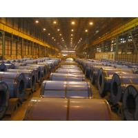 Quality SPCD / SPCE / DC03 custom cut Deep Drawing Cold Rolled Steel Coils / Coil for sale