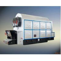 China Large High Efficiency Hot Water Boiler Stable Running Wood Chip Fired Powerful on sale