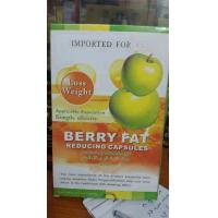 Quality Organic Herbal Weight Loss Pills / Adult Berry Fat Loss Tablets No Side Effect for sale
