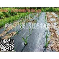 Quality woven geotextile Plastic Modling Type Mulch plastic film for agriculture weed barrier for sale