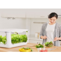 Quality Home Lettuce PP 24V Greenhouses Hydroponic Growing Systems for sale