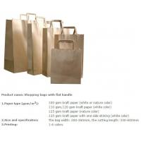 Quality Luxury high quality shopping carrier gift paper bag,making kraft paper bag custom printed luxury recycled shopping carri for sale