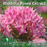 Quality Rhodiola Rosea Extract for sale