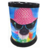 Quality 3D Lenticular Printing Service / Plastic Pencil Holder for School and office for sale