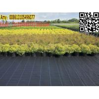 Buy green house / garden black weed control cover fabric for weed barrier mat at wholesale prices