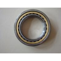 Quality FAG Bearing in middle-sized and large-sized motors NU2313-E-TVP2 for sale