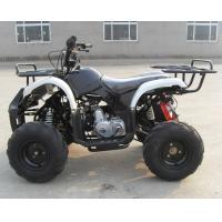Buy cheap 125CC,Air cooled, 4-stroke, single cylinder, chain drive,Max horsepower:8.0 from wholesalers