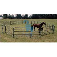 Quality Square Portable Horse Corral Panels Gate , Silver / Green Horse Round Pen Panels for sale
