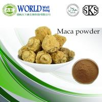 China Sex improvement Maca Root Extract powder/Maca extract powder on sale