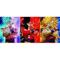 Quality 30*40cm 0.6mm PET Dragon Ball 3D Lenticular Poster for sale