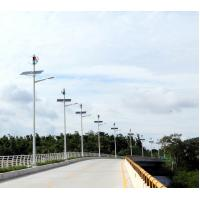 Quality Magnetically Levitated Wind Turbine 60W LED Wind Solar Hybrid Street Light System for sale