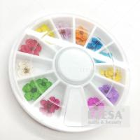 Quality 12 Color Dried Flower For Nail Art Decorations Natural Nail Dry Flowers Wheel DIY for sale