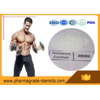 Quality Cycling Anabolic Testosterone Steroid Hormone Enanthate CAS 315-37-7 For Bodybuilding for sale