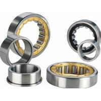 Quality Durable Cylindrical Roller Thrust Bearings Chrome Steel With Brass Cage NJ305ECP for sale
