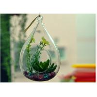 Quality Hanging Teardrop Glass Terrarium , Hanging Glass Teardrop Candle Holders for sale