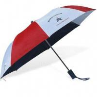 Quality 2-fold Auto Open Umbrella with Zinc-plated Metal Ribs for sale