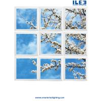 Buy cheap Largest sky Ceilings,Ceiling art and panoramic Wall murals in the world  Virtual Sky-LED panels from wholesalers