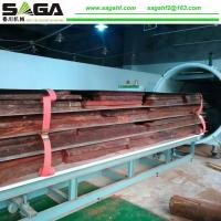 Quality Radio Frequency Wave Hardwood Drying Vacuum Timber Drying Ovens From SAGA for sale