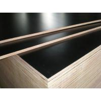 Quality hot sale low price good quality 9mm 11mm 12mm 15mm 18mm film faced plywood in Africa for sale