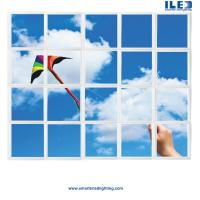 Buy cheap wall murals, architectural ceiling ideas, light diffuser panels, MRI design, decorative light lens, ceiling tile, sky, i from wholesalers