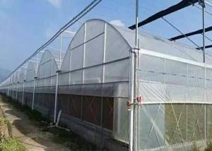 Quality Hot Galvanized Frame Dome Lettuces Plastic Cover Greenhouse for sale