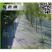 Quality China pp woven black ground cover 70gsm~120gsm black ground cover for sale