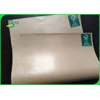 Quality Paper Plate Raw Material FSC PE Coated Brown Kraft Plain Paper 700mm Coils for sale