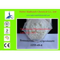 Quality 1255-49-8 Cutting Cycle Steroids Testosterone / Testosterone Phenylpropionate for sale