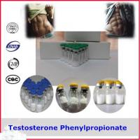 Quality 99% Puriy Testosterone Phenylpropionate Steroid Powder CAS 1255-49-8 for sale