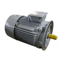 Buy cheap 3 Phase 2 Pole Induction Motor Cast Iron Y2-132M1-2 10kw Small Variable Speed from wholesalers