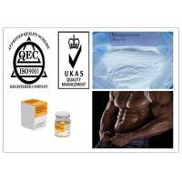 Quality Most Popular Steroid Boldenone Base Raw Powder for Muscle and Strength Growth for sale