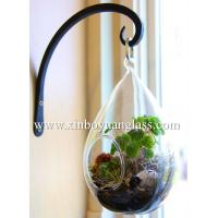 China Teardrop glass terrariums hanging vase Glass Air plant holders on sale