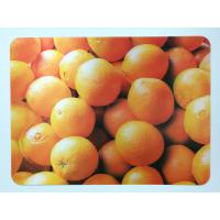 Quality Animal 3D Lenticular Plastic Placemat For Promotion 28 * 38cm for sale