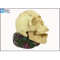 Buy Non-toxic Human Skull Cool Fish Tank Decorations , Eco Friendly Novelty Fish Tank Ornaments at wholesale prices
