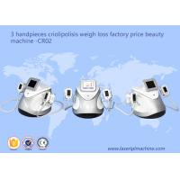 Quality 3 Handpieces Cryolipolysis Slimming Machine Weight Loss Beauty Equipment CR02 for sale