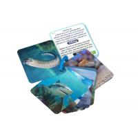 Quality Animial Image 3d Lenticular Sheets Learning card For Children With Alphabet for sale