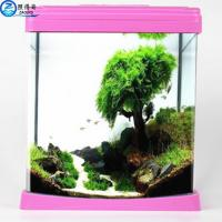 Quality Colorful Aquarium Fish Tank Beautiful For Home / Hote Corner Decoration for sale