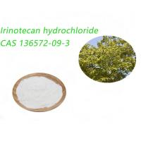 Quality API Irinotecan Hydrochloride Whitish Crystalline Powder Treating Colon Cancer for sale
