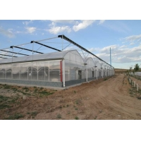 Quality Fruits Irrigation Tunnel Multi Span Plastic Film Greenhouse for sale