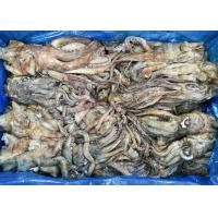 Quality frozen giant squid tentacles open neck chinese ocean vessels BQF dosidicus gigas frozen squid rings for sale