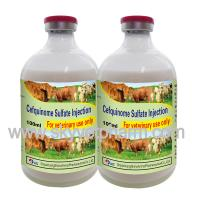 Quality Ceftiofur Hydrochloride Injection for sale