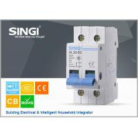 Quality AUT2 Switch electric Miniature Circuit Breakers for home , electrical mcb for sale