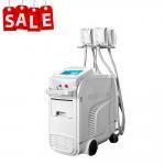 Quality 1400W Fat Freeze Cryolipolysis Machine Slimming Beauty Salon Equipment 4 Handles for sale