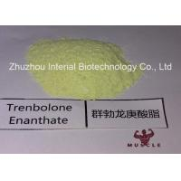 Quality 99.48% Purity Tren Anabolic Steroid Trenbolone Enanthate/Parabolan for Muscle Gain Fitness for sale