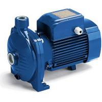 Quality Large Flow Centrifugal Water Pump 2HP / 1.5KW For Irrigating Gardens for sale