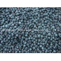 Buy cheap IQF Frozen Blueberry from wholesalers