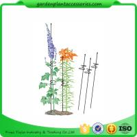 "Quality Single Grow Garden Plant Supports / Spiral Plant Support 4"" Z - Rings for sale"