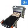 Custom Length Egg Printing Machine With 45ml High Capacity Ink Cartridges for sale