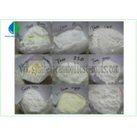 Quality Testosterone Isocaproate Male Muscle Enhancing Steroids CAS 15262-86-9 White Powder for sale