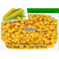 Quality Organic corn kernel sweet canned corn 340G HOT SALE for sale